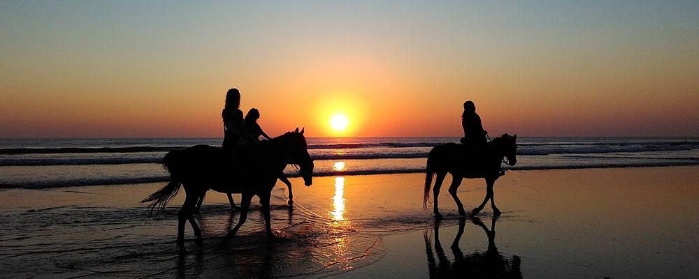 Randonnée à cheval en Bretagne