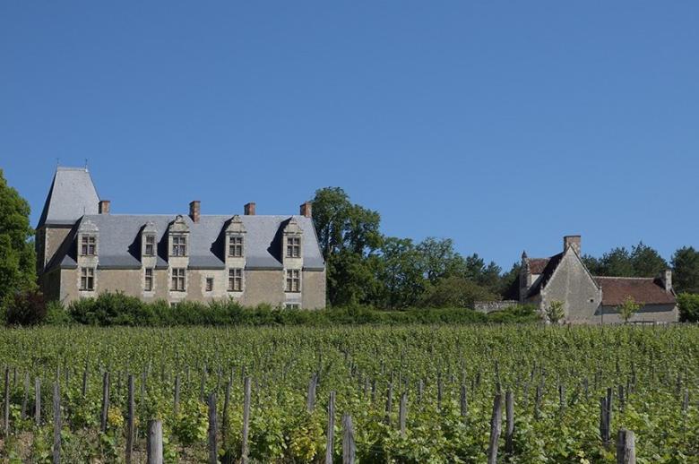 Authentic Loire Valley - Location villa de luxe - Vallee de la Loire - ChicVillas - 31