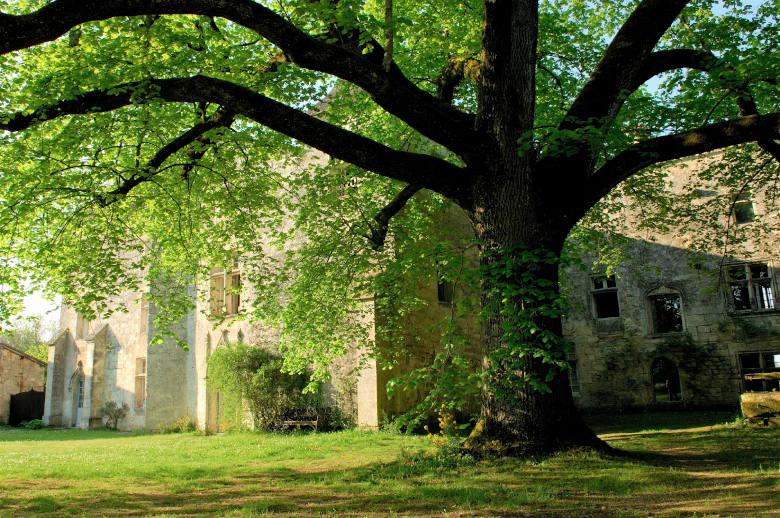 Charentes ou Dordogne - Location villa de luxe - Dordogne / Garonne / Gers - ChicVillas - 27
