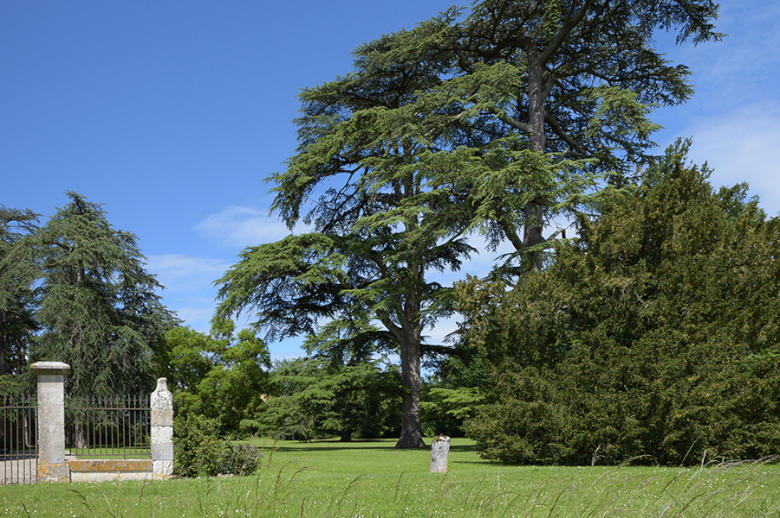 Chateau Les Hauts de Garonne - Location villa de luxe - Dordogne / Garonne / Gers - ChicVillas - 25