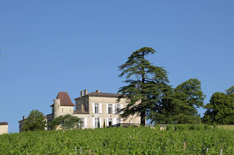 Chateau Luxury Heritage - Location villa de luxe - Aquitaine / Pays Basque - ChicVillas - 1