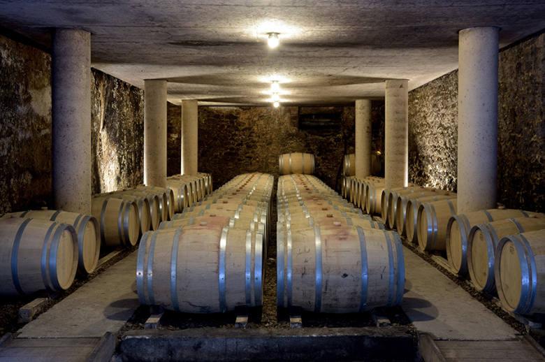 Chateau Luxury Heritage - Location villa de luxe - Aquitaine / Pays Basque - ChicVillas - 40