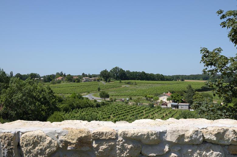 Chateau Wine and Design - Location villa de luxe - Dordogne / Garonne / Gers - ChicVillas - 35
