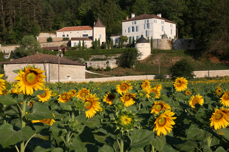 Dream of Dordogne - Location villa de luxe - Dordogne / Garonne / Gers - ChicVillas - 27