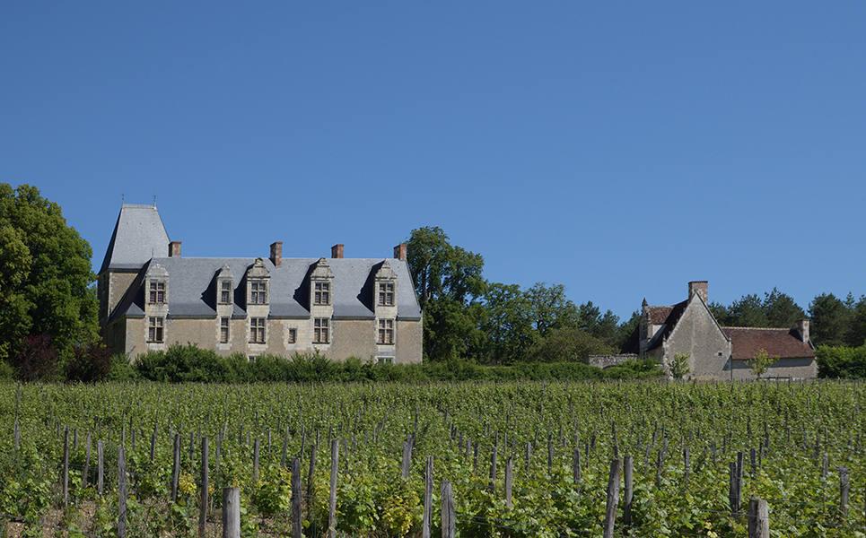 Majestic Loire Valley - Luxury villa rental - Loire Valley - ChicVillas - 40