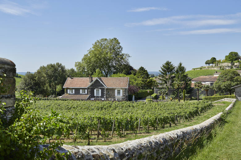Pure Wine Retreat - Location villa de luxe - Aquitaine / Pays Basque - ChicVillas - 31