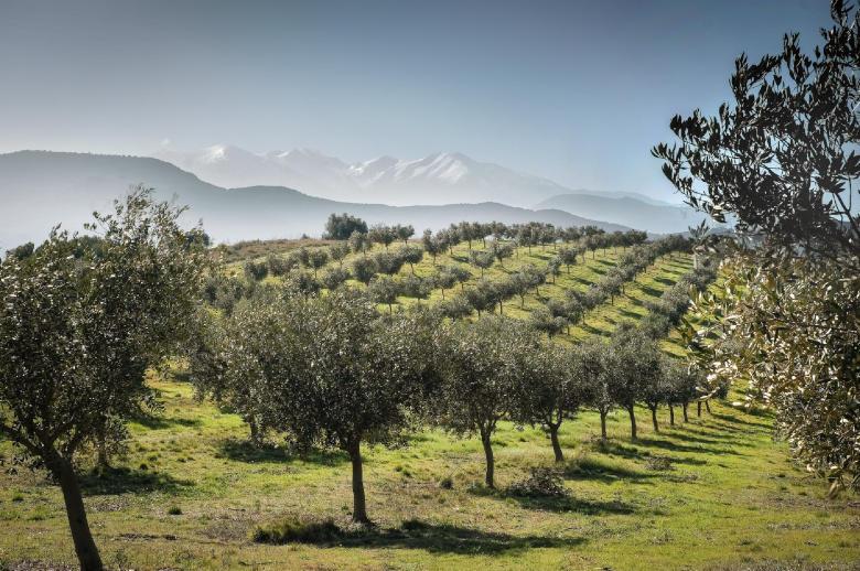 Pyrenees ou Mediterranee - Luxury villa rental - Provence and the Cote d Azur - ChicVillas - 29