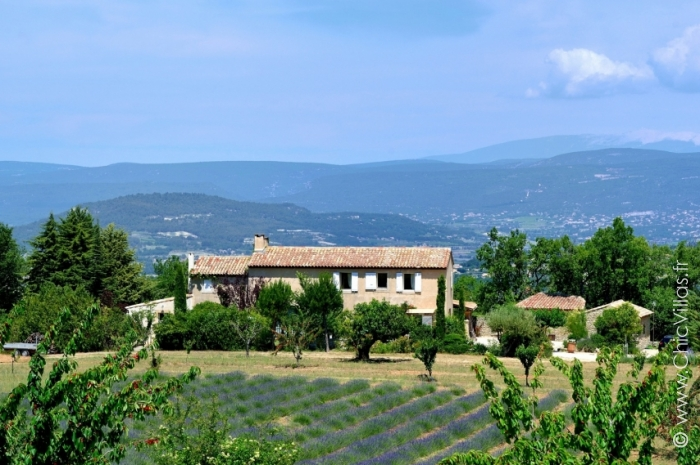 Location de villa avec piscine Lavande du Luberon