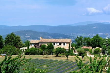 Rental villa with pool Lavandes du Luberon