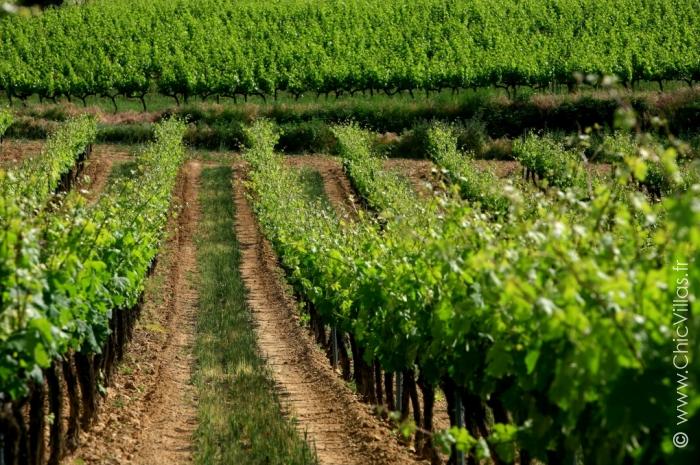 Luxury  Luberon - Location villa de luxe - Provence / Cote d Azur / Mediterran. - ChicVillas - 34