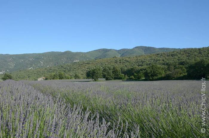 Paradis en Luberon - Luxury villa rental - Provence and the Cote d Azur - ChicVillas - 26